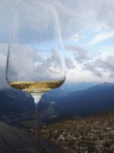 calice. vino bianco. paesaggio. montagna. dolomiti vinovip.