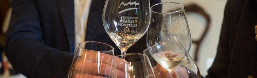 Wine. tasting. consorzio. Asolo. Montello. venezie. channel.