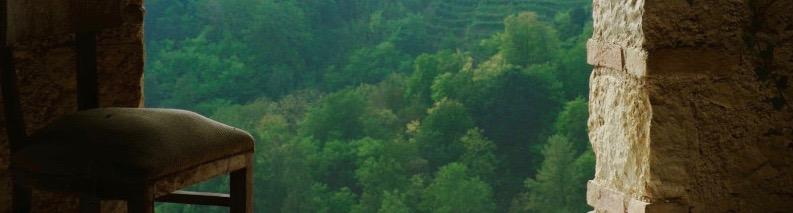 vista. panoramica. sulle. vigne.