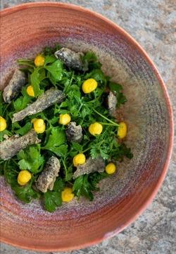 Ristorante Valbruna piatto vegetariano